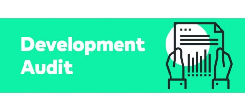 Development Audit