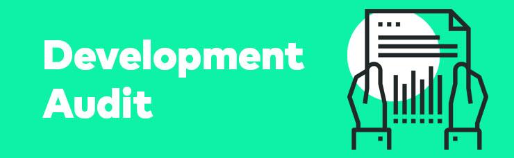 Development Audit